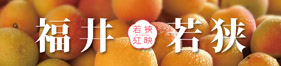 梅果汁商品のイメージ